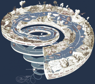 Geological Time Spiral, found image
